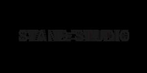 Logo Stand Studio